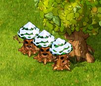 記念樹×3 0430