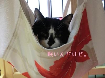 似合う(^^)