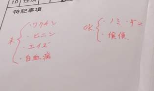 2012120420yonkyoudai.jpg