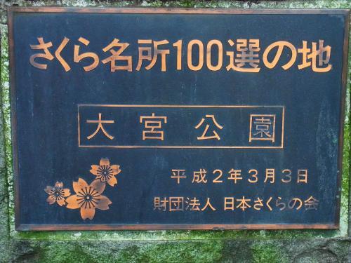140915-202さくら100選(S)
