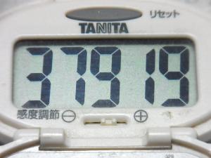 140923-251歩数計(S)