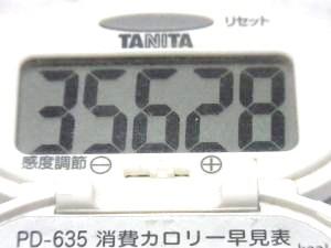 140927-241歩数計(S)