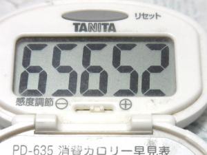 140928-251歩数計(S)