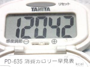141004-251歩数計(S)