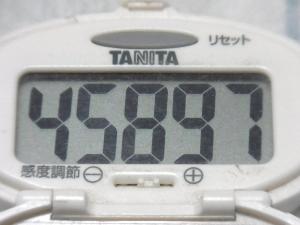 141005-241歩数計(S)