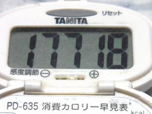 141011-251歩数計(S)