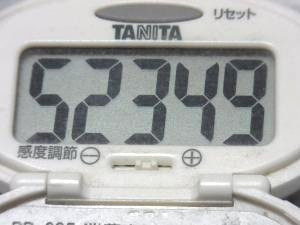 141012-241歩数計(S)