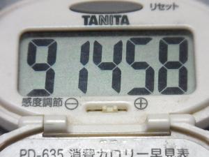 141013-251歩数計(S)