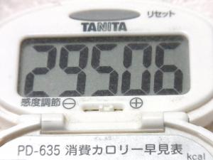 141018-261歩数計(S)