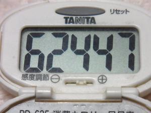 141019-251歩数計(S)