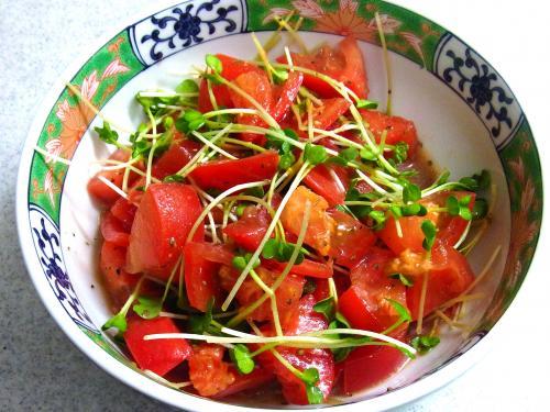 141025-231トマトとかいわれのサラダ(S)