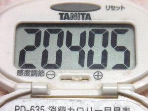 141025-261歩数計(S)
