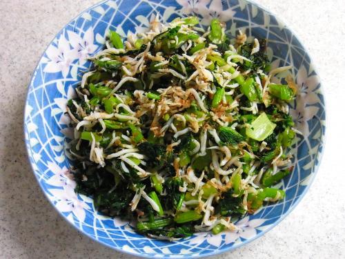 141026-231小松菜のしらすおかか和え(S)