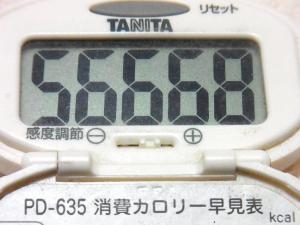 141026-251歩数計(S)