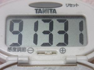 141103-251歩数計(S)