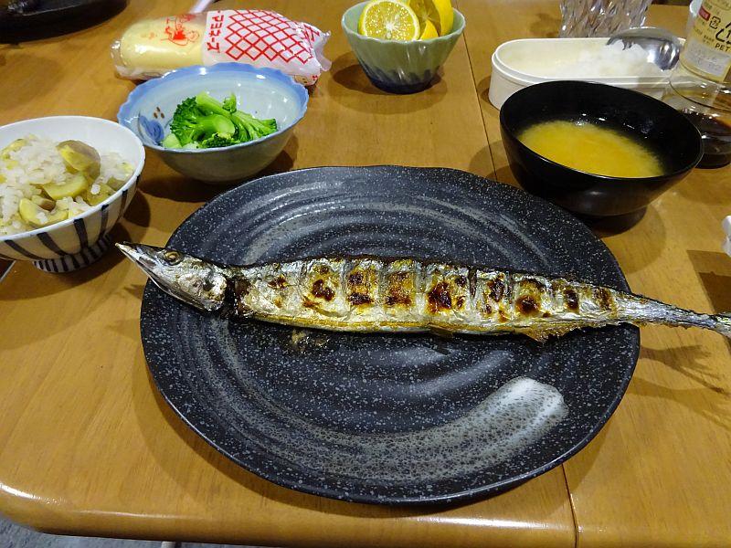 2014年の初秋刀魚
