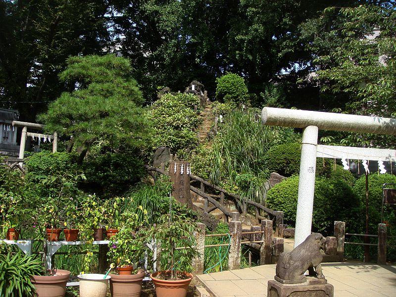 千駄ヶ谷 鳩森八幡 富士塚