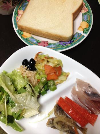 9日目晩御飯