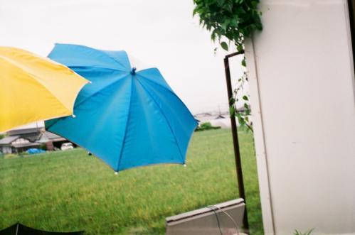 梅雨の雨傘