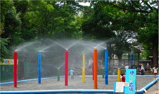 楽寿園 夏 水遊び 広場 こども
