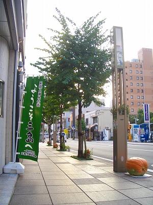 三島市中央町 仮装コンテスト ハロウィン パレード