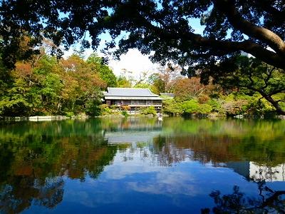 楽寿園 満水 小浜池 三島 平成23年度 白鳥 楽寿館