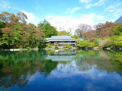 天然記念物 名勝 楽寿園 満水 小浜池 楽寿館 紅葉