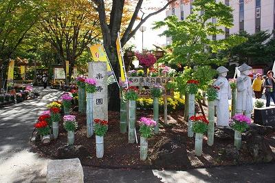 楽寿園 2011 菊まつり
