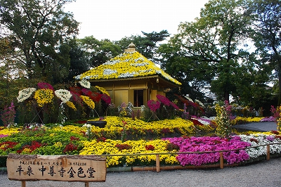 楽寿園 11月 菊まつり 中尊寺金色堂