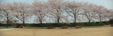 面塚公園01
