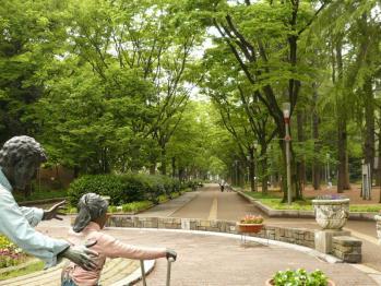 靫公園バラ01