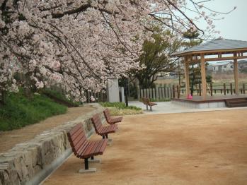 面塚公園05