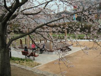 面塚公園06