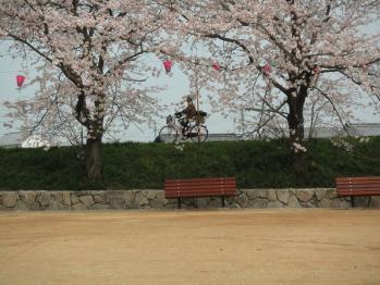 面塚公園08