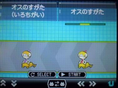 CIMG0755_convert_20120625224005.jpg