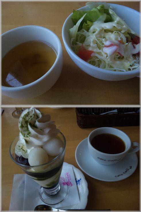 キャッツカフェ・ランチ