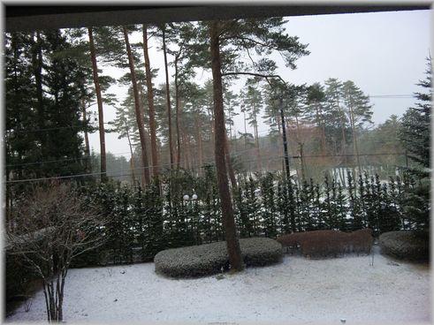 ホテル・雪
