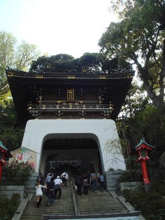 20110416enoshima.jpg