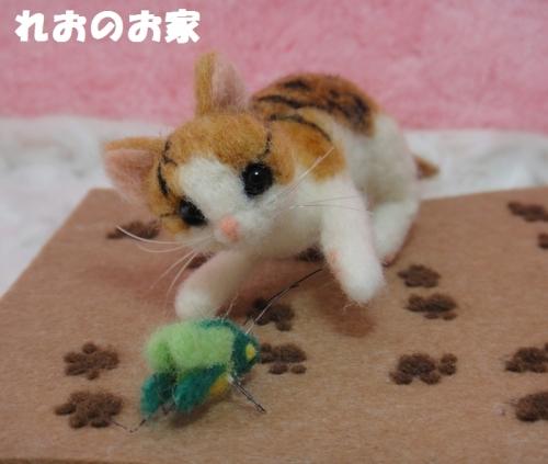 バッタ子猫1