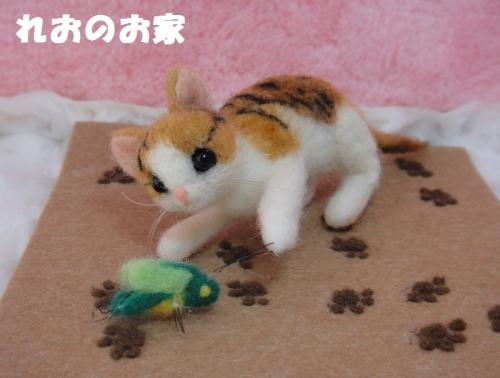 バッタ子猫2