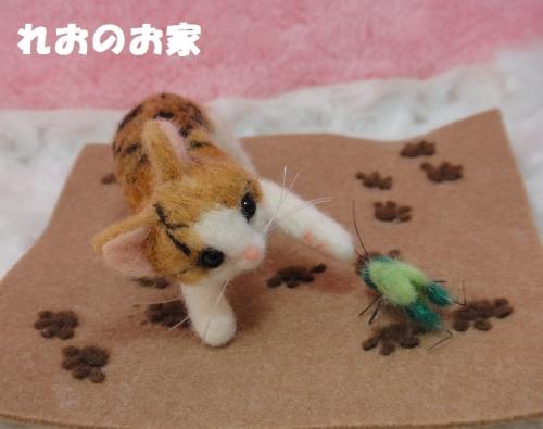 バッタ子猫3