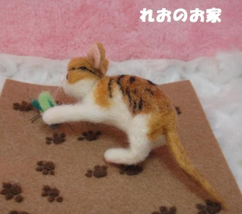 バッタ子猫4