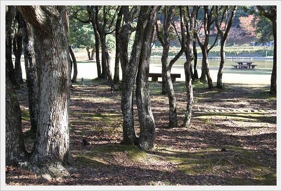須の川公園6