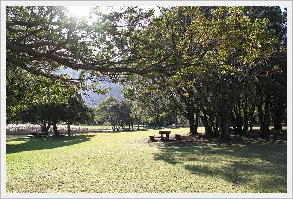 須の川公園4