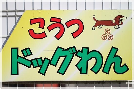 徳島ドッグラン2