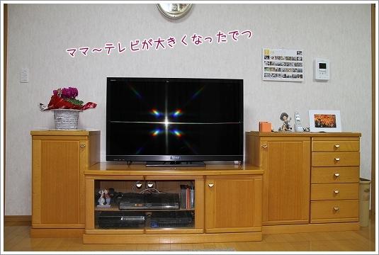 テレビ買いました3