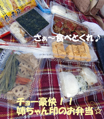 琵琶湖2A