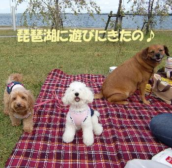 琵琶湖1ーa