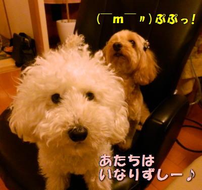 モコ&みゆA