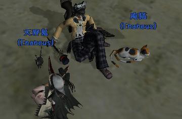 Enaneus:ペットだらけ